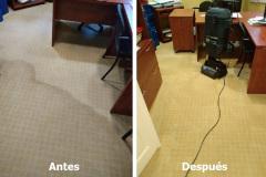 Limpieza de moqueta en oficina