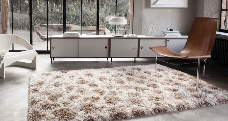 Limpieza de alfombras a domicilio madrid menu with for Precios limpieza alfombras madrid