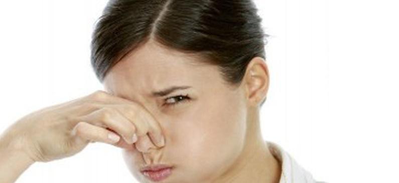 C mo eliminar el olor a humedad de alfombras y moquetas - Como eliminar el olor a humedad de una habitacion ...