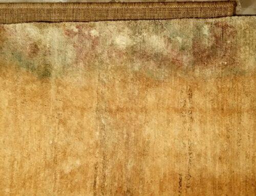 Cómo prevenir el daño que el agua puede producir sobre una alfombra