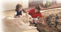 ¿La limpieza de alfombras ayuda a mi hijo con alergia?