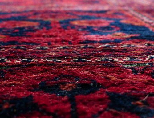 5 enemigos que se esconden en tu alfombra
